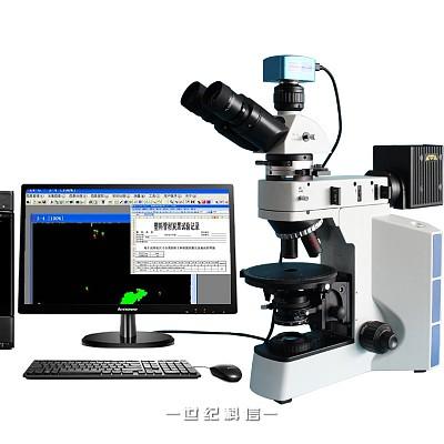 POL40P-UV-T炭黑显微图像分析评级系统